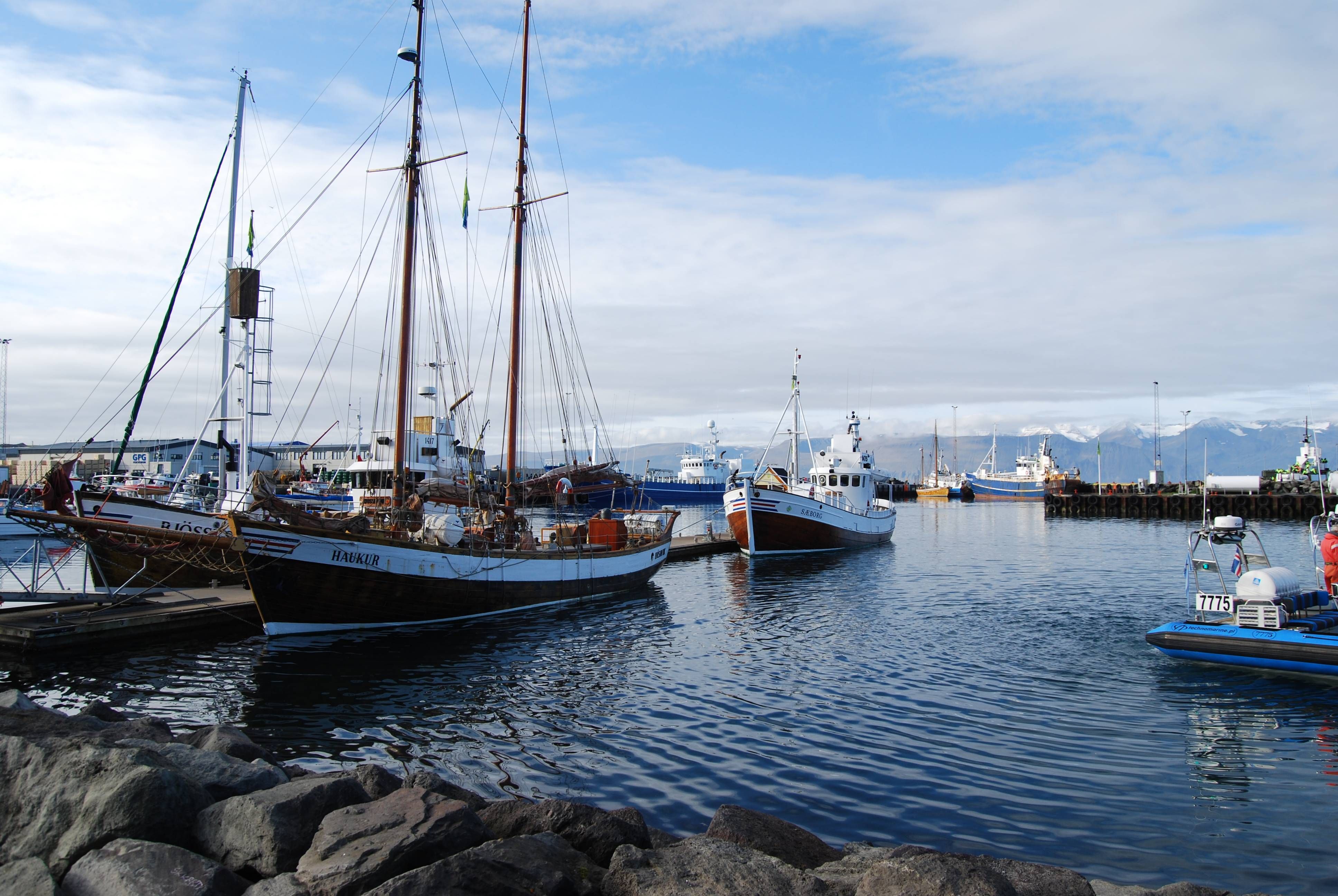 Photo 1: Husavik et ses baleines