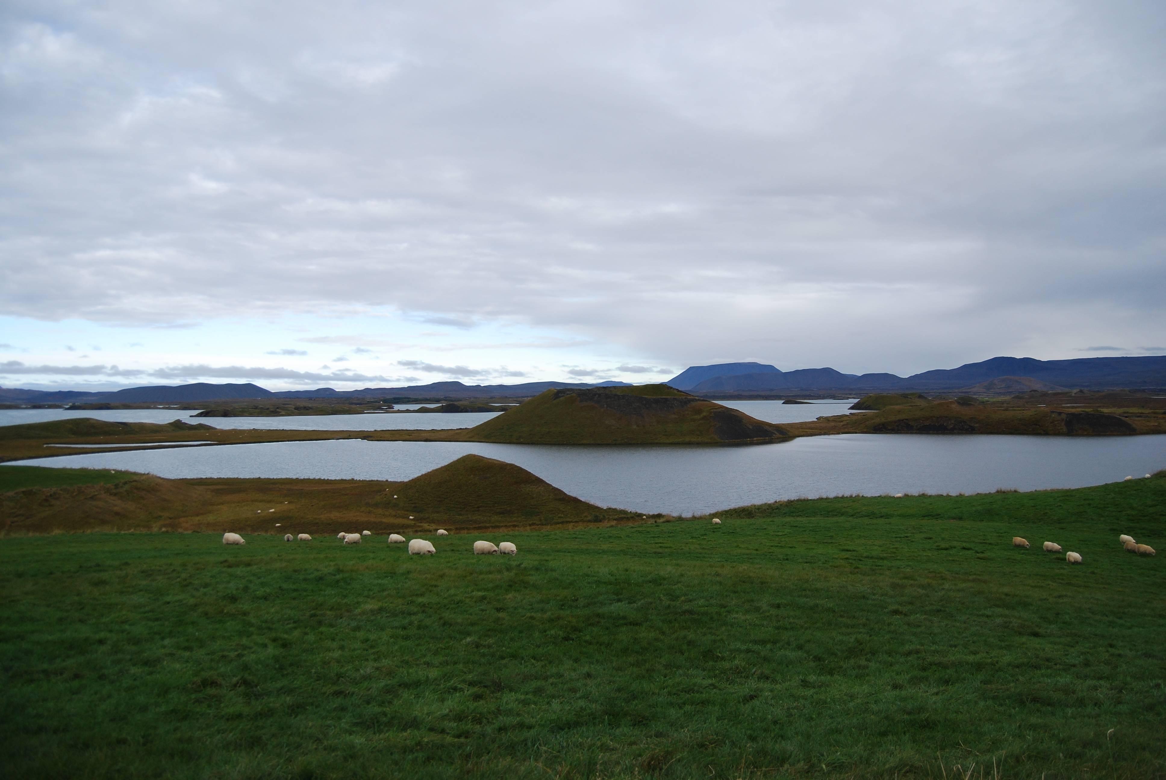 Photo 3: Le Lac de Myvatn, sérénité assurée