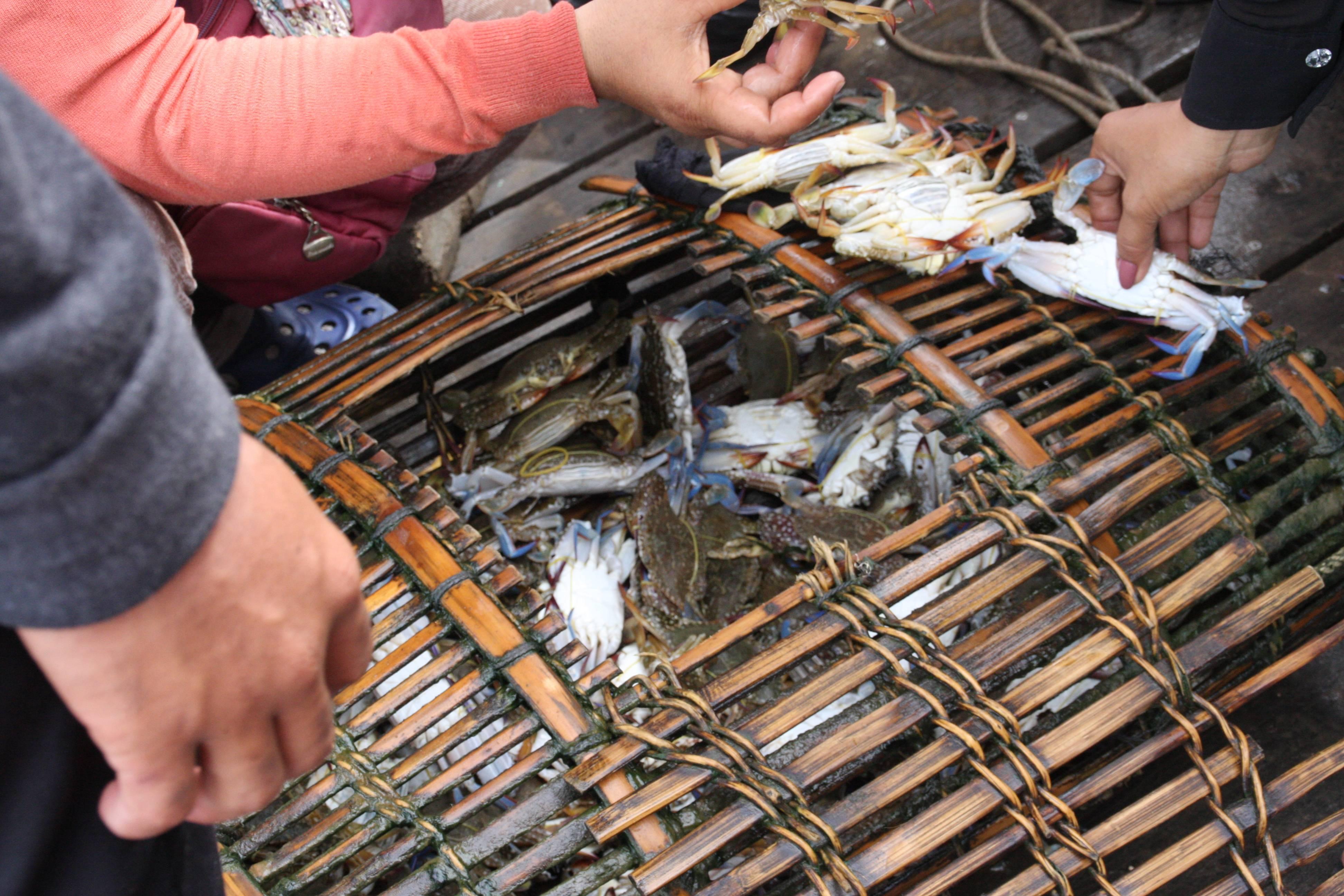 Photo 2: Marché aux crabes de Kep