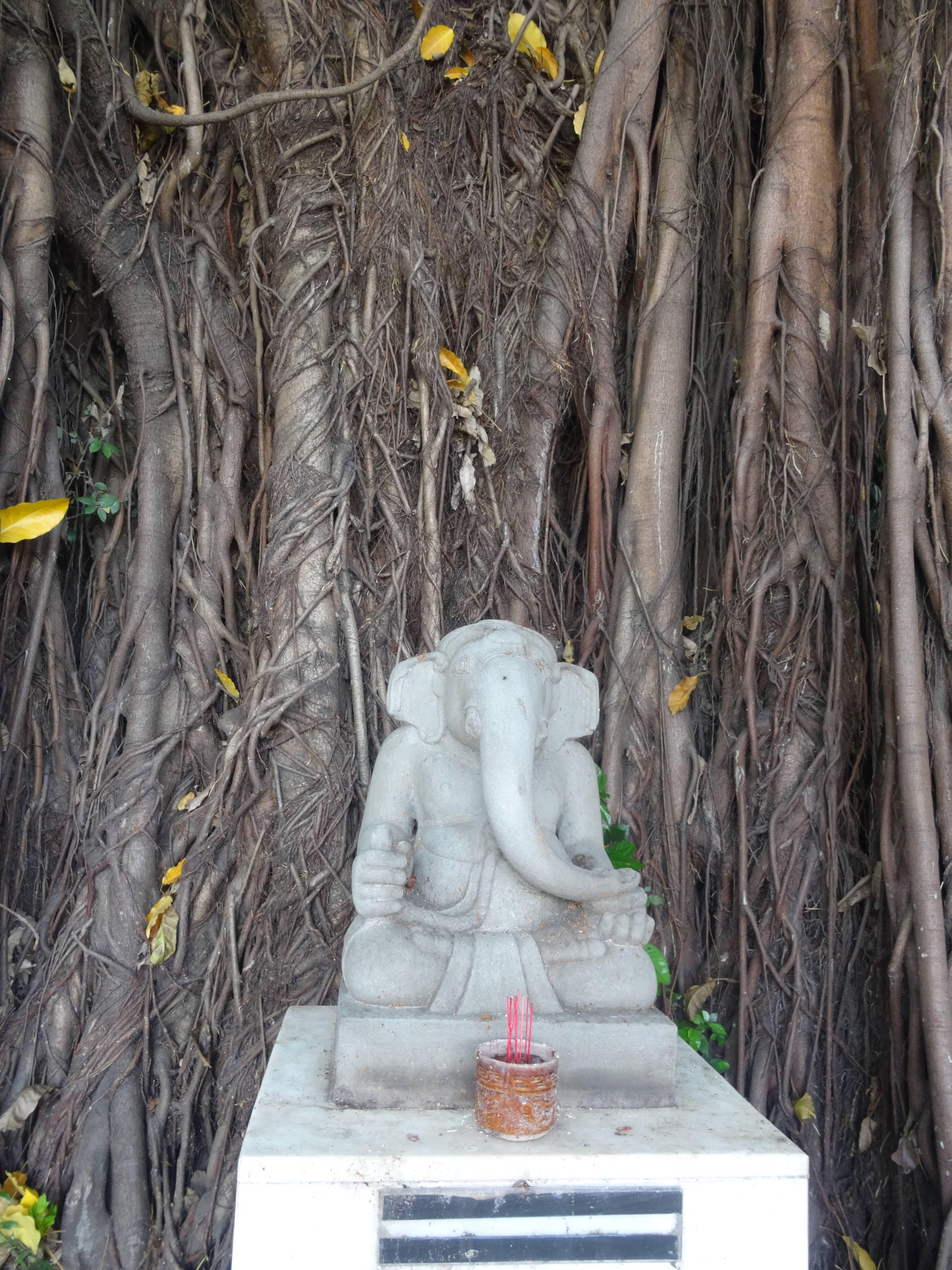 Photo 3: Musée d'art Cham à Da Nang, pour qui aime la sculpture....