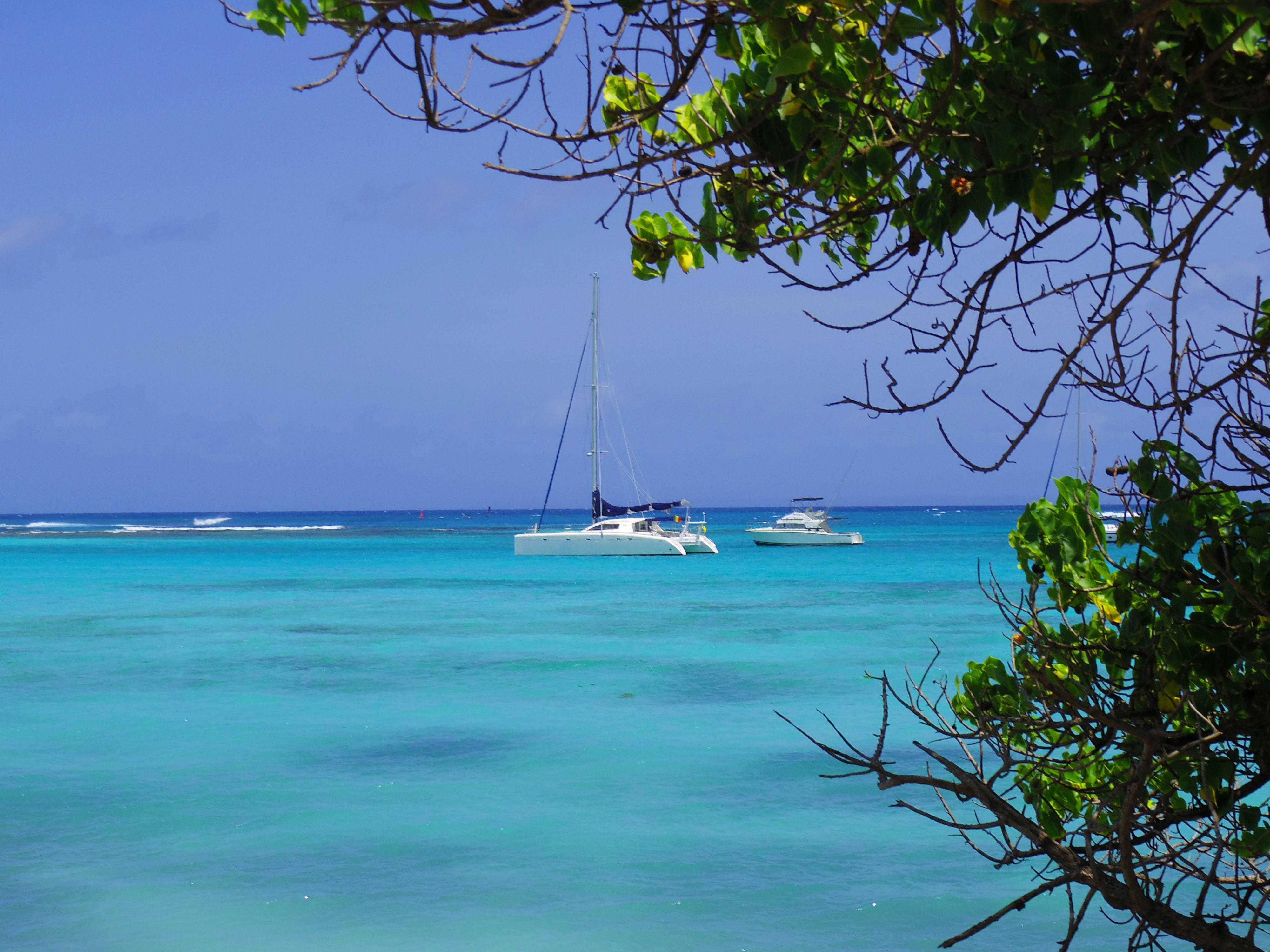 Photo 2: Guadeloupe... Comme dans un rêve !
