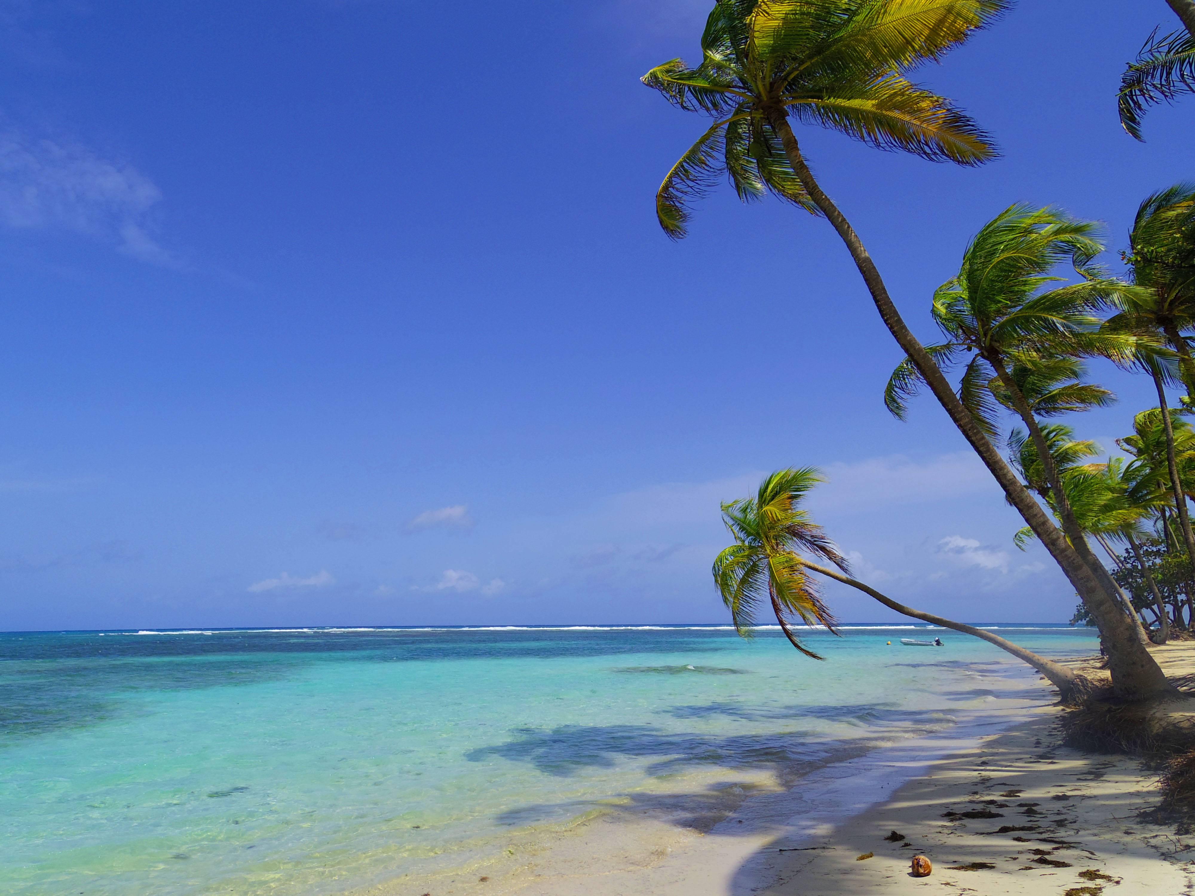 Photo 3: Guadeloupe... Comme dans un rêve !