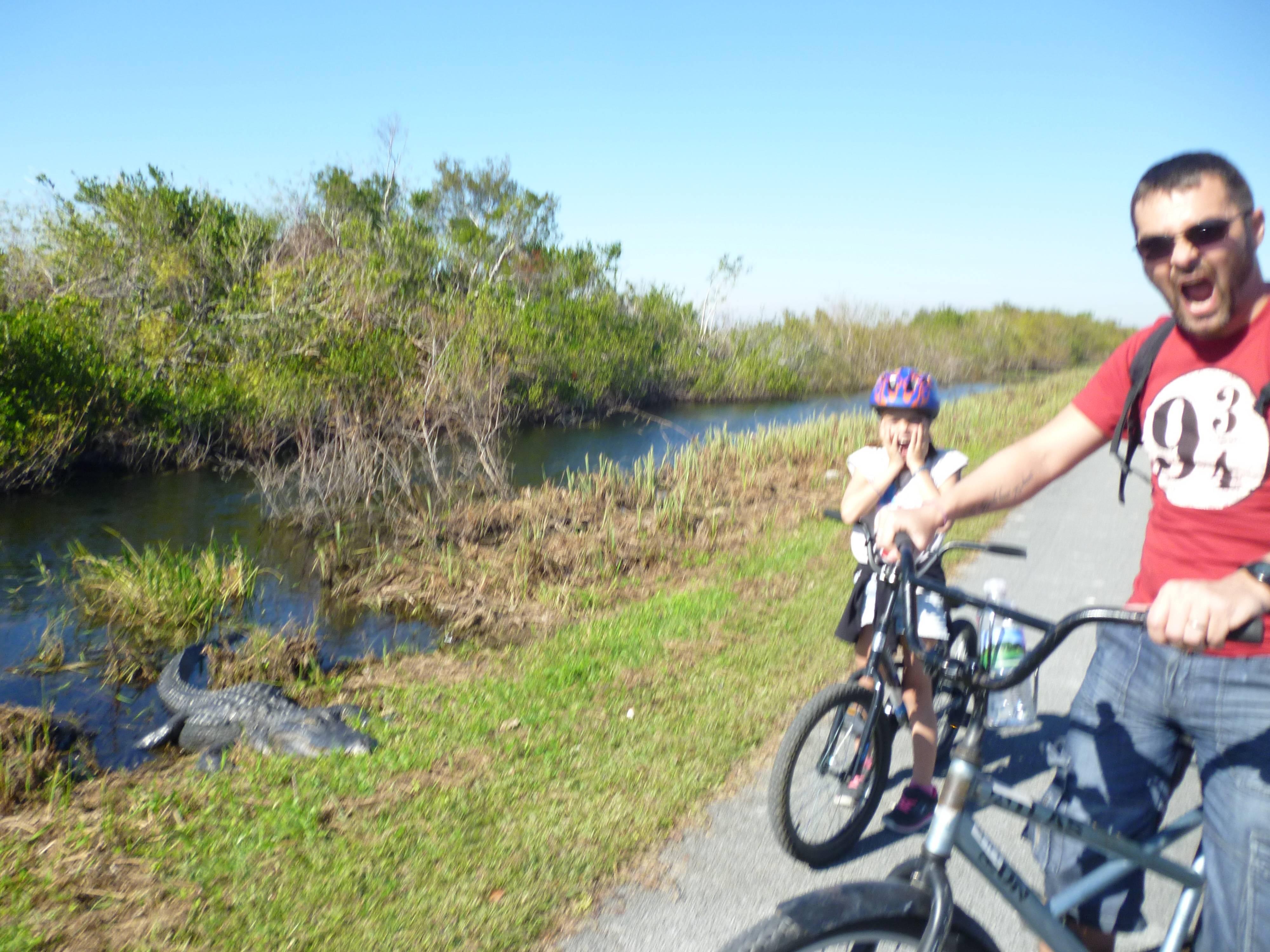 Photo 3: Une balade hors du temps dans les marécages des Everglades en Floride