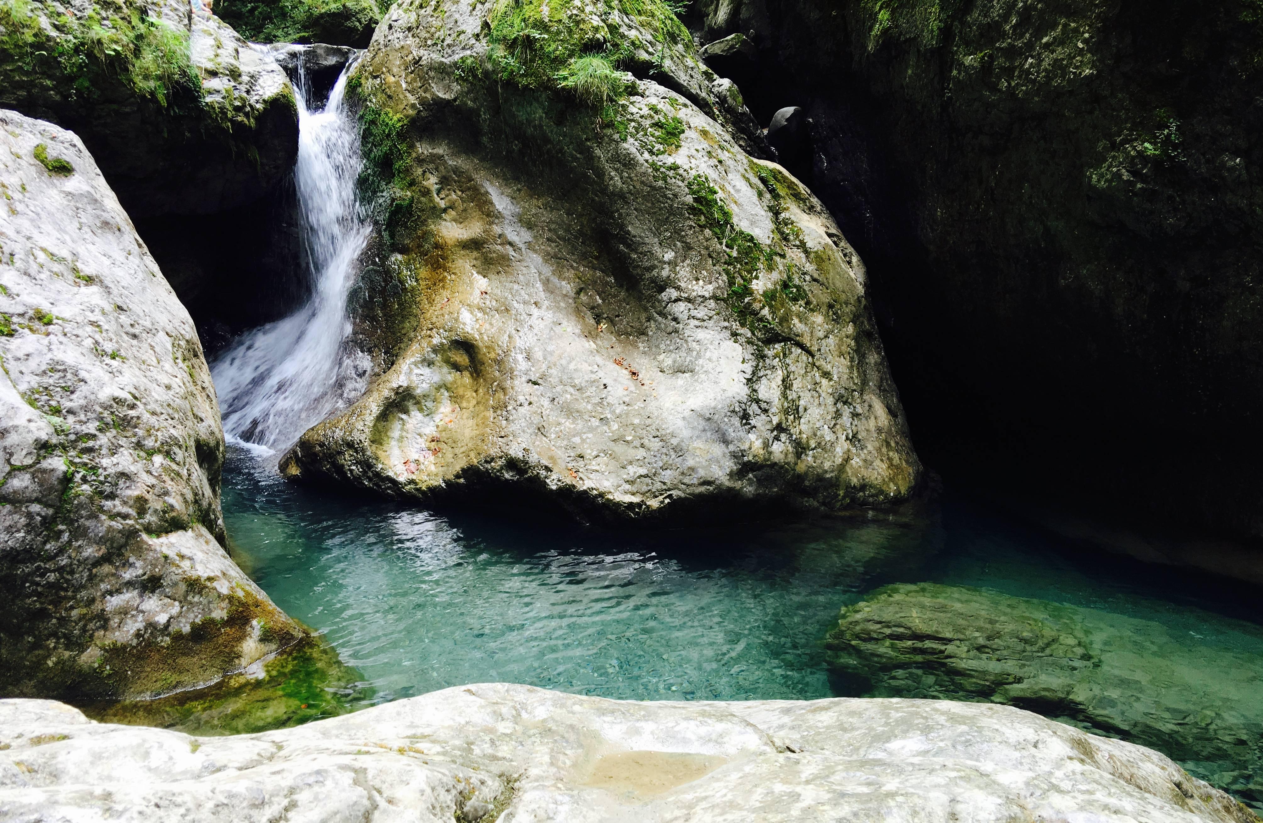 """Photo 2: """"La petite Amazonie du Pays Basque"""""""