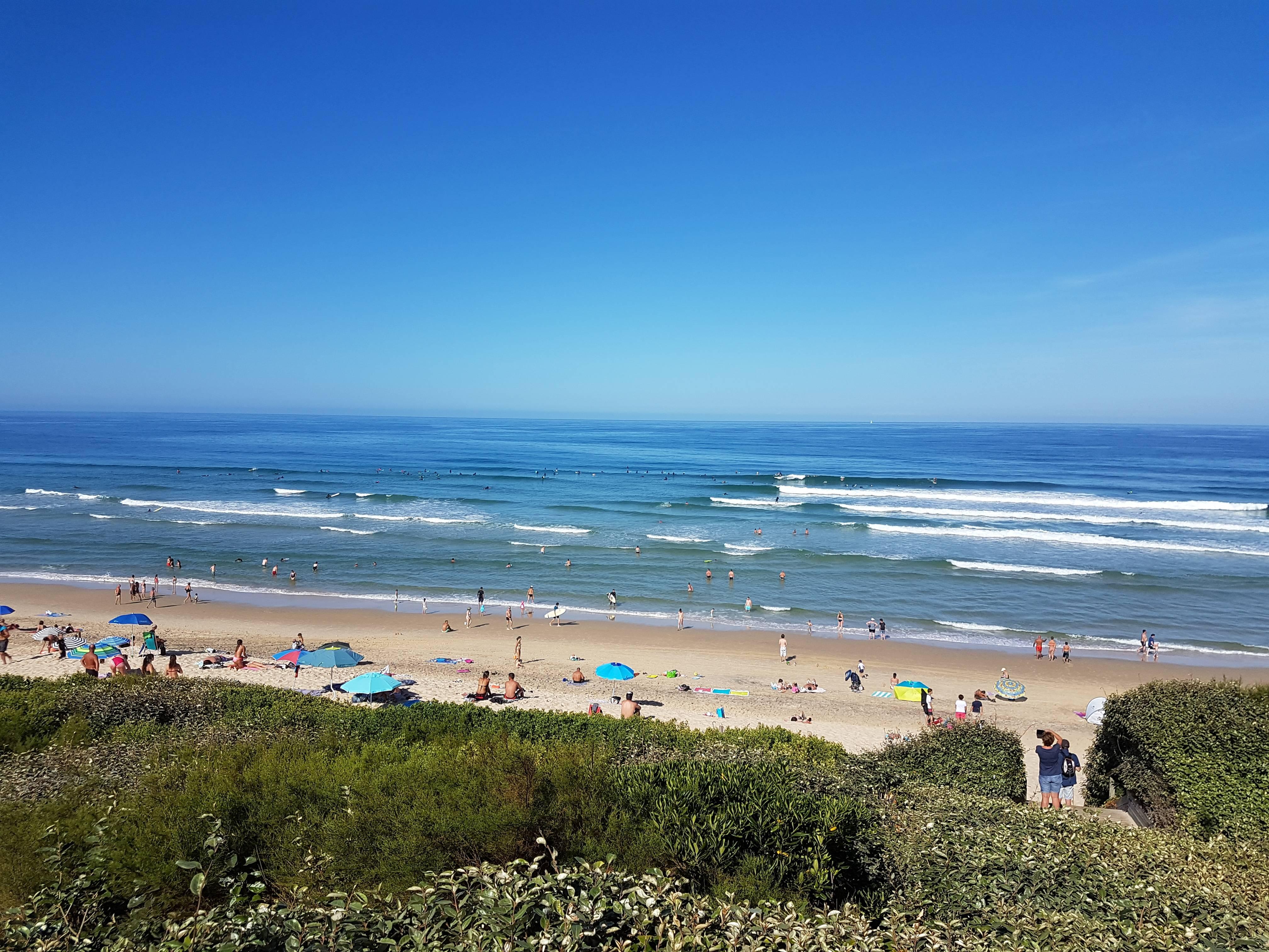 Photo 1: Bisca et l'océan