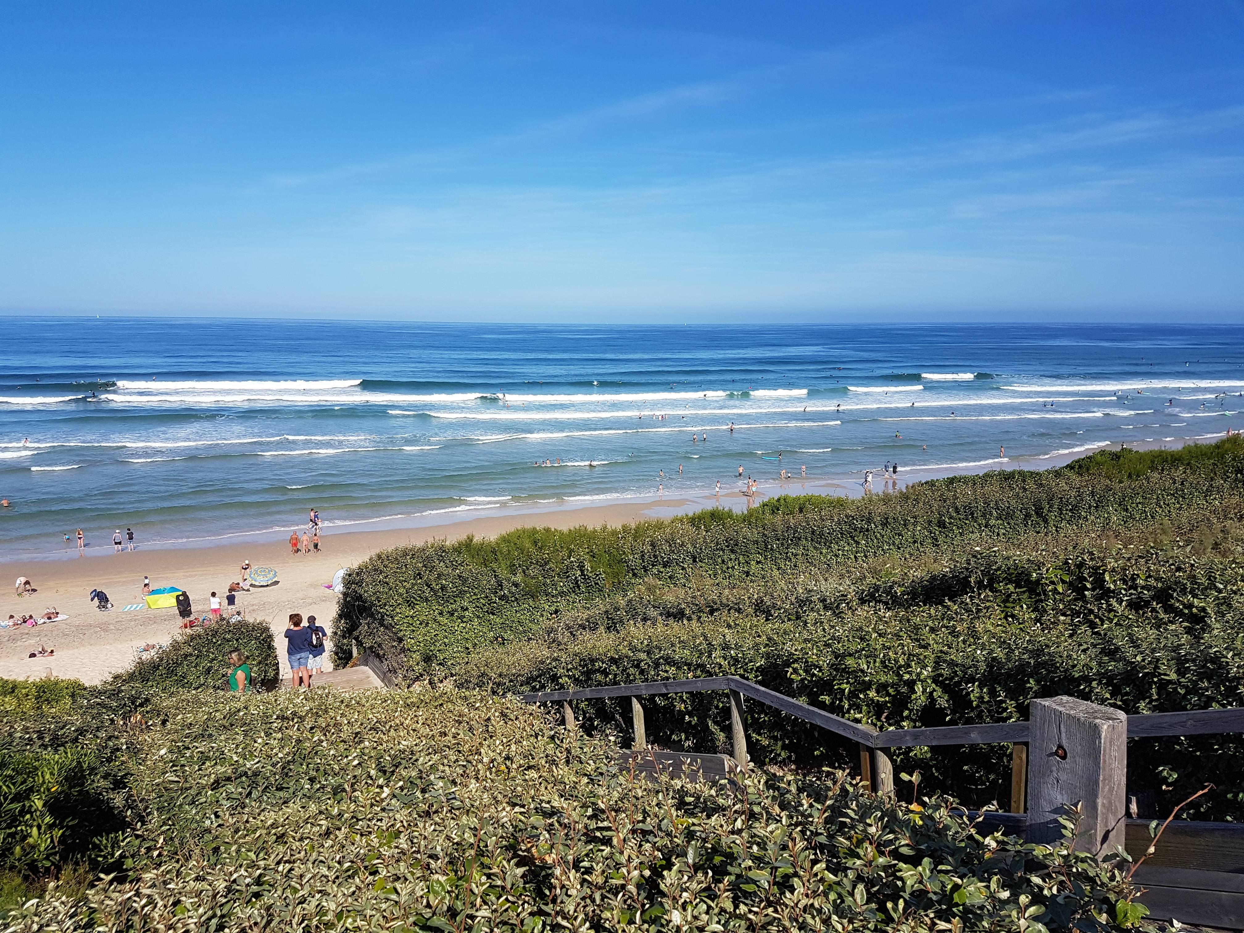 Photo 2: Bisca et l'océan