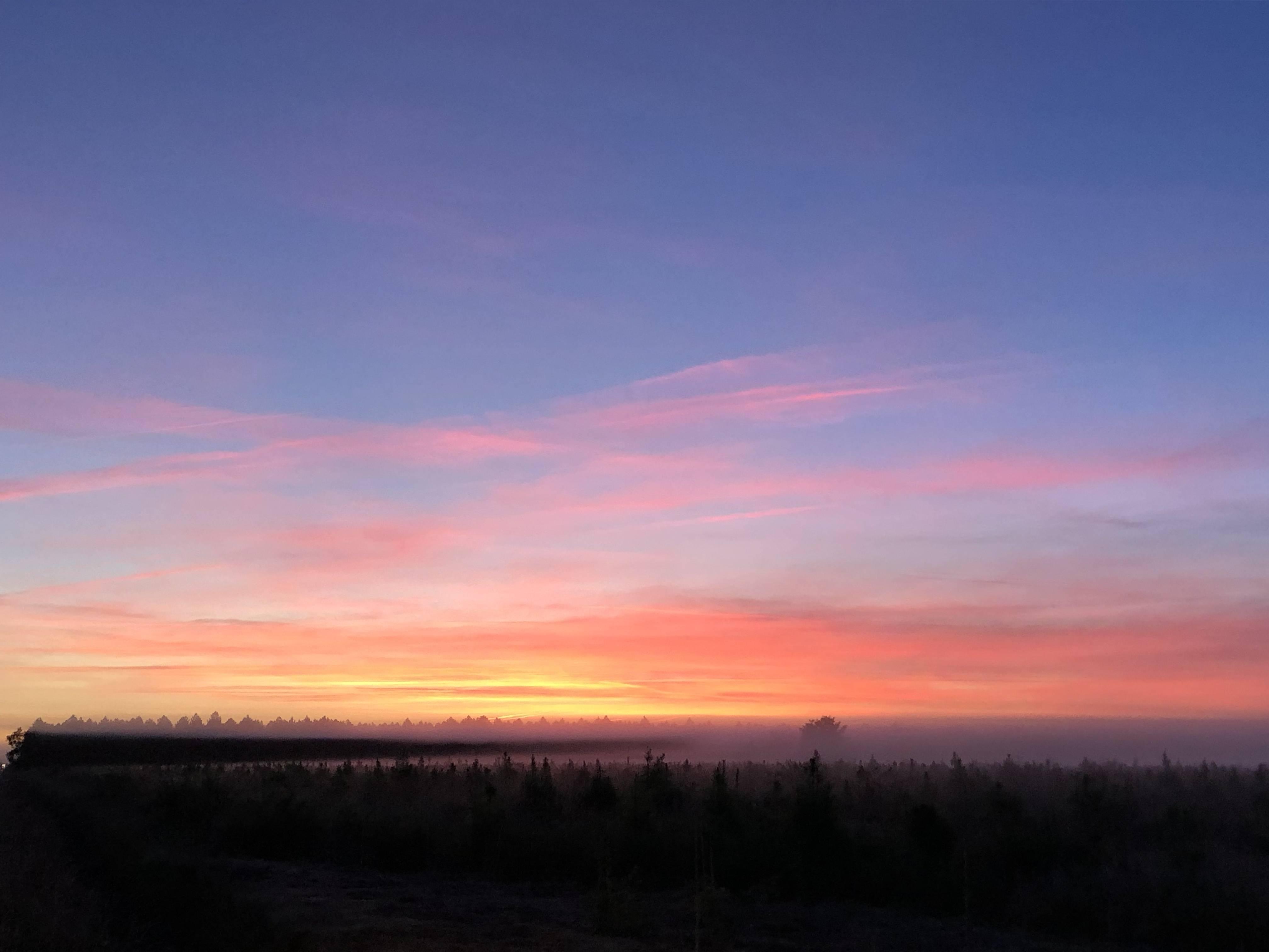 Photo 1: Biscarrosse au lever du jour