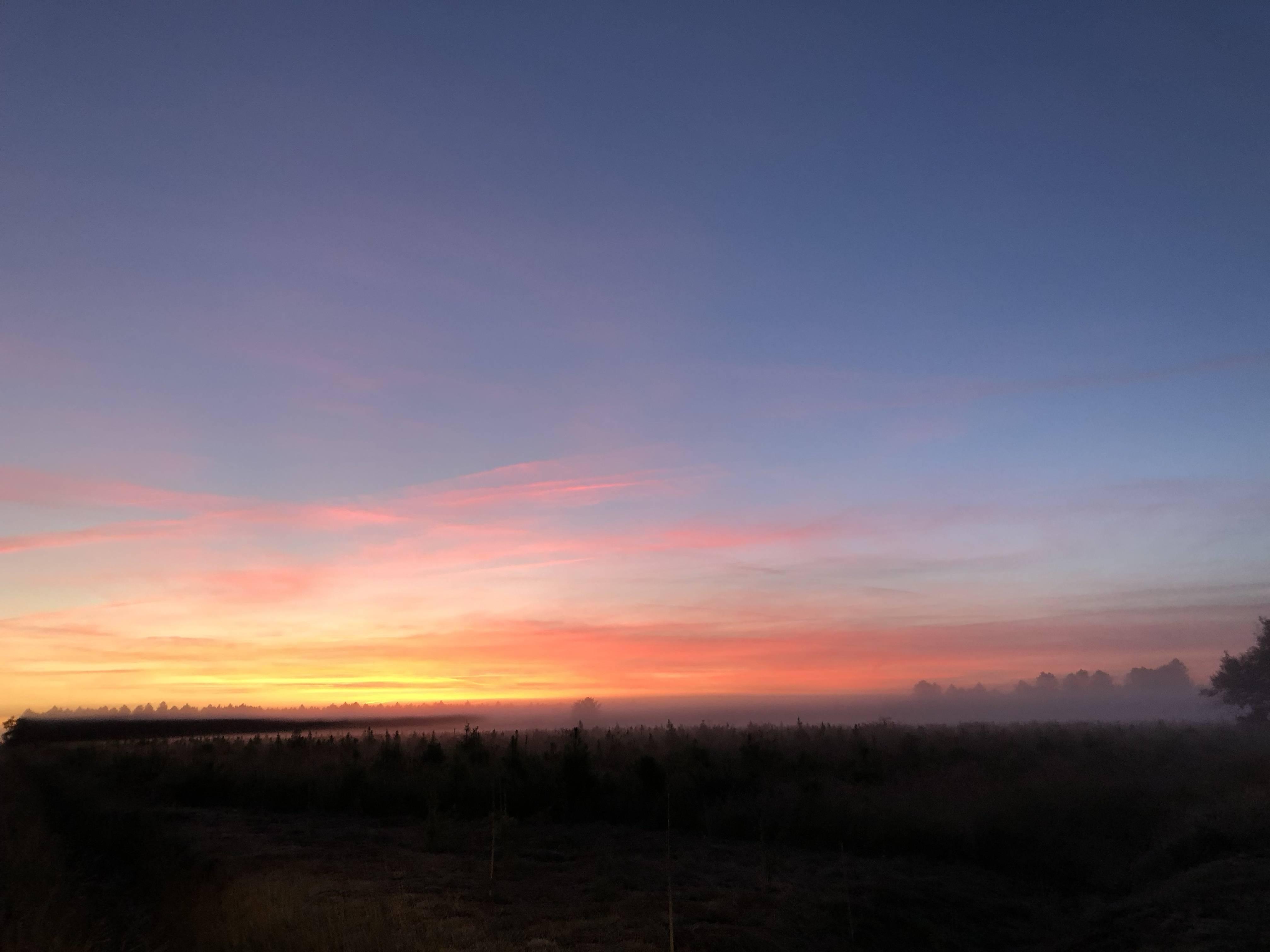 Photo 2: Biscarrosse au lever du jour