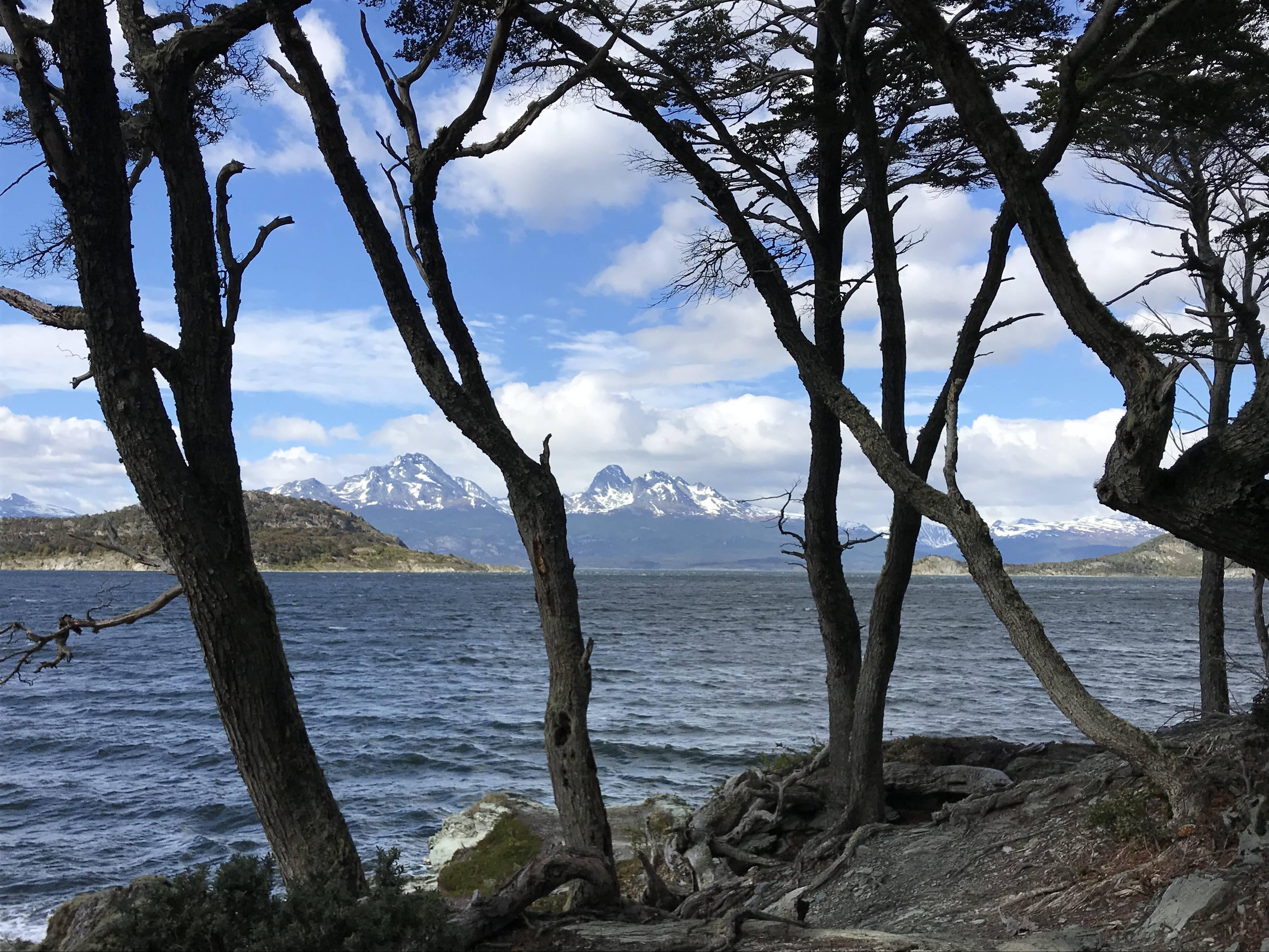 Photo 2: Le parc de la Terre de feu à Ushuaïa