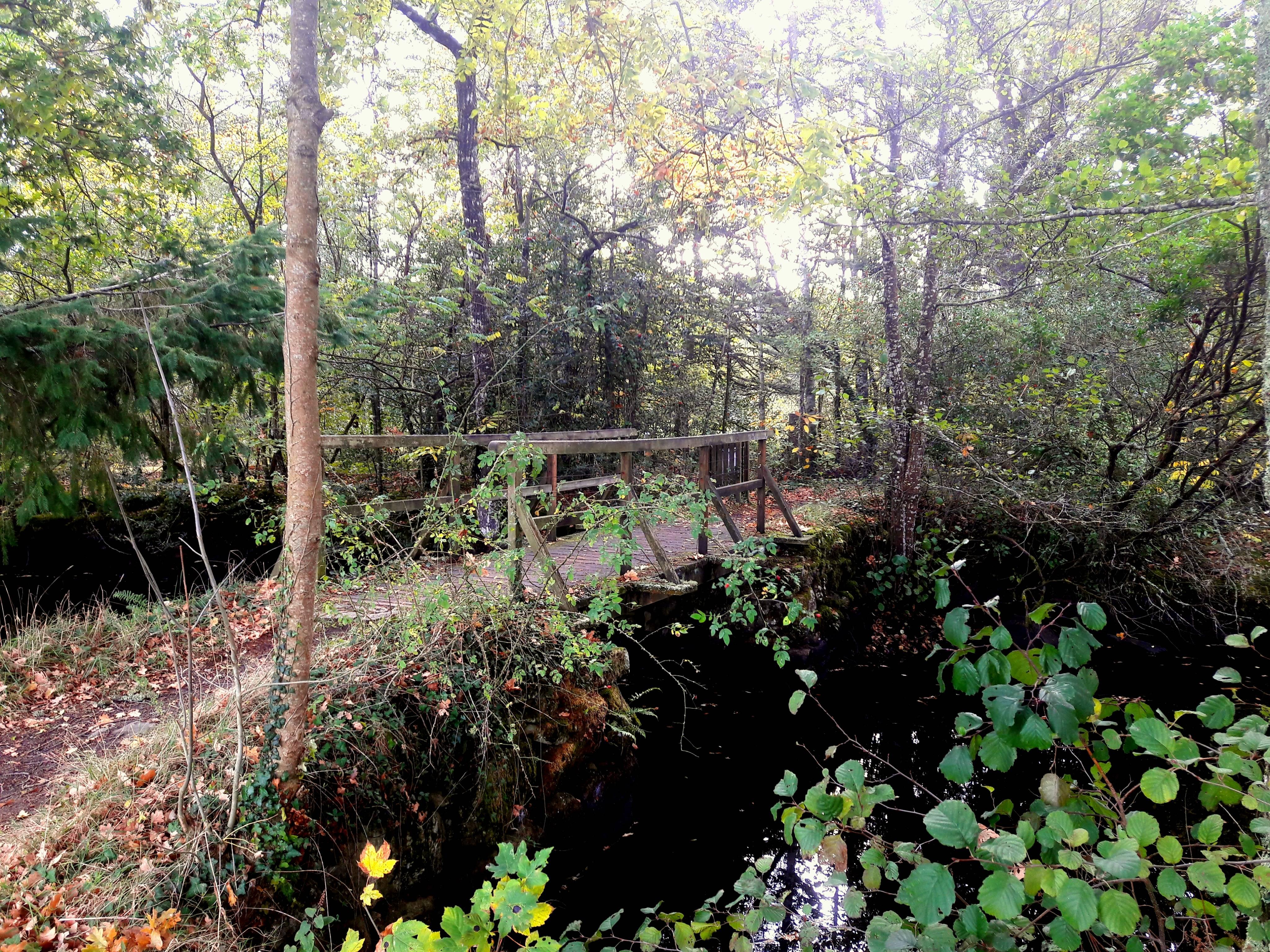 Photo 1: Balade au parc de Keravéon, Erdeven