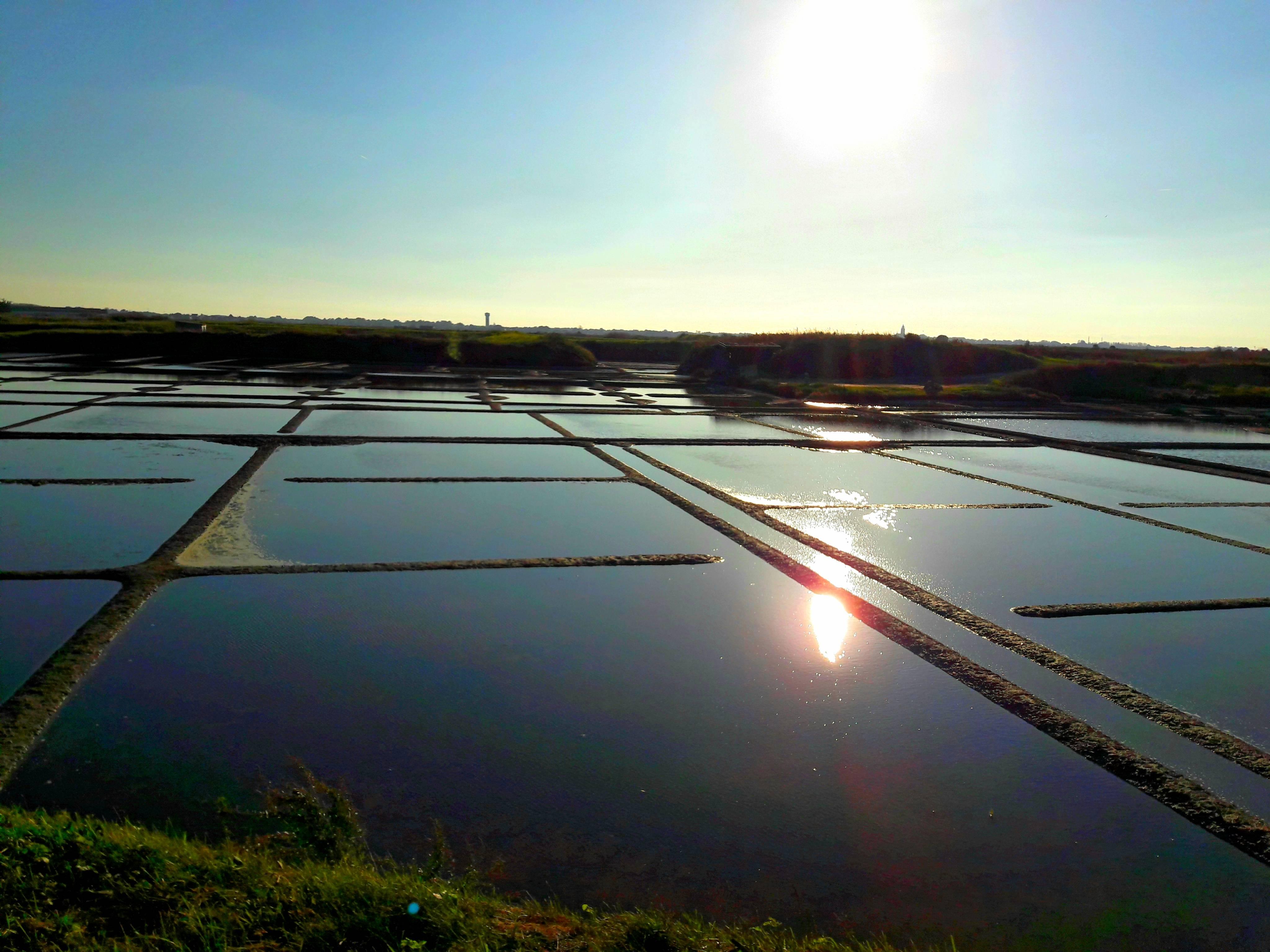 Photo 1: Au coeur des marais salants de Guérande
