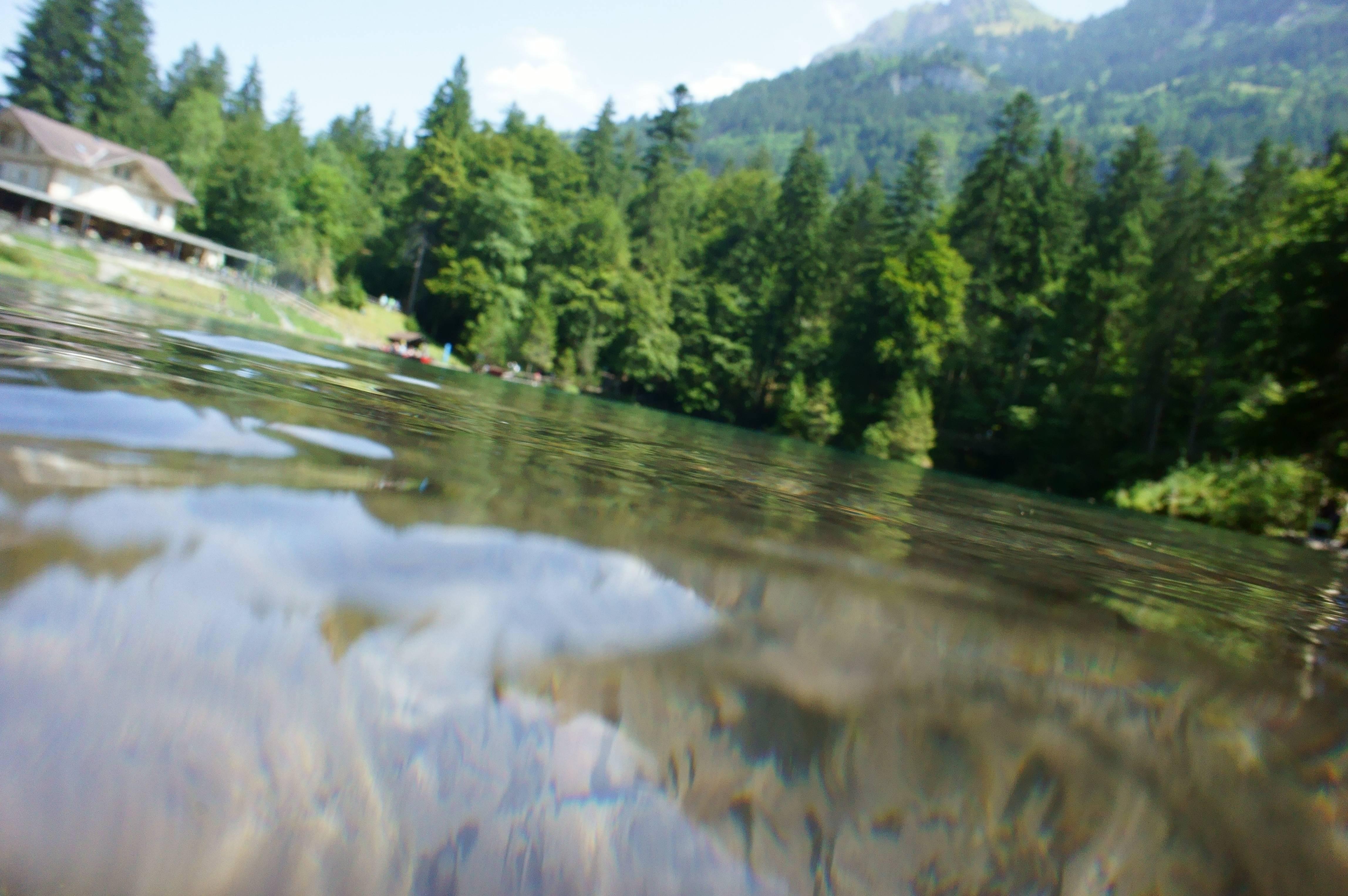 Photo 3: Le Lac de Blausee : L'eau cristalline qui coule de source