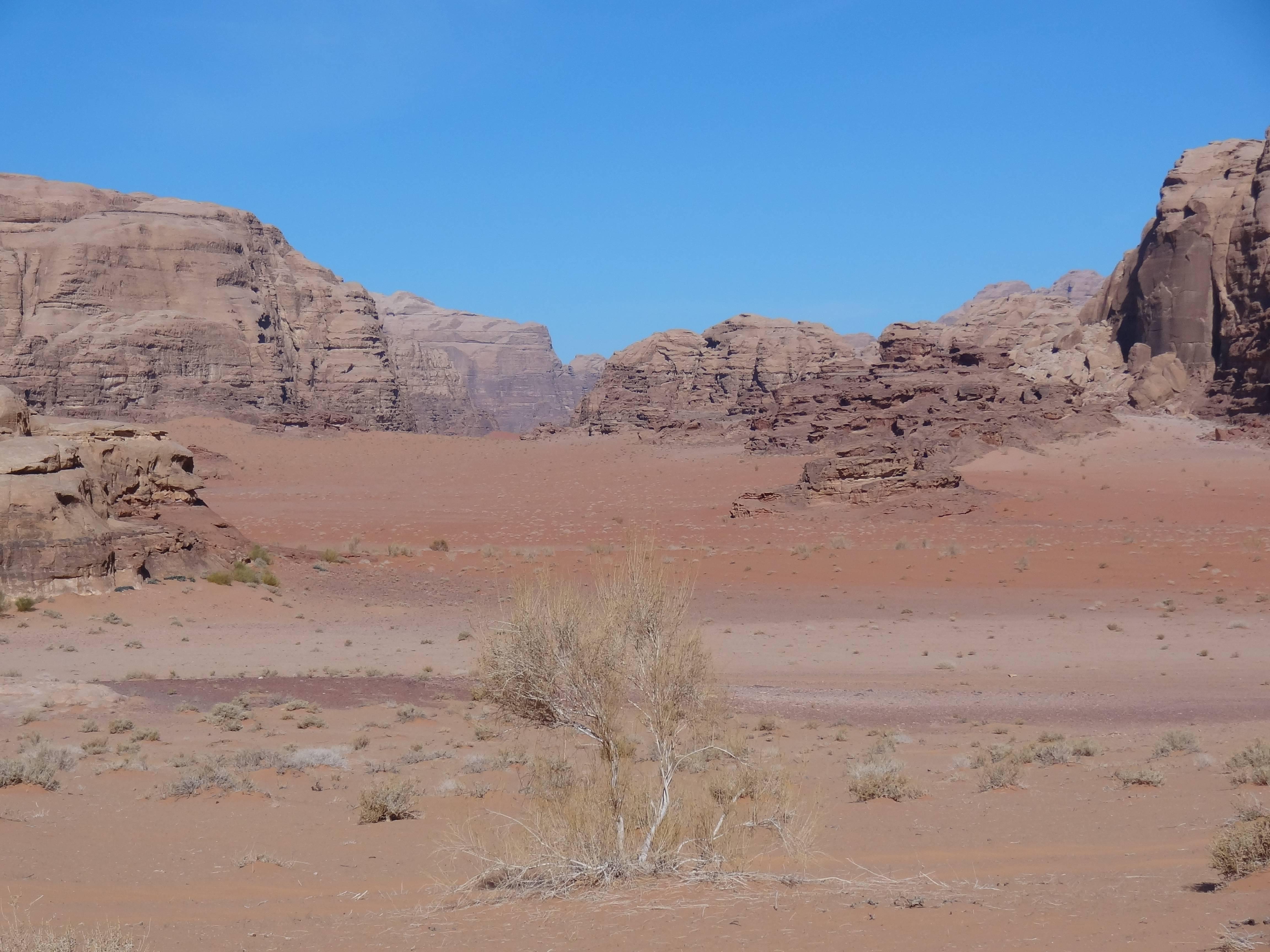 Photo 2: Immersion dans le Wadi Rum