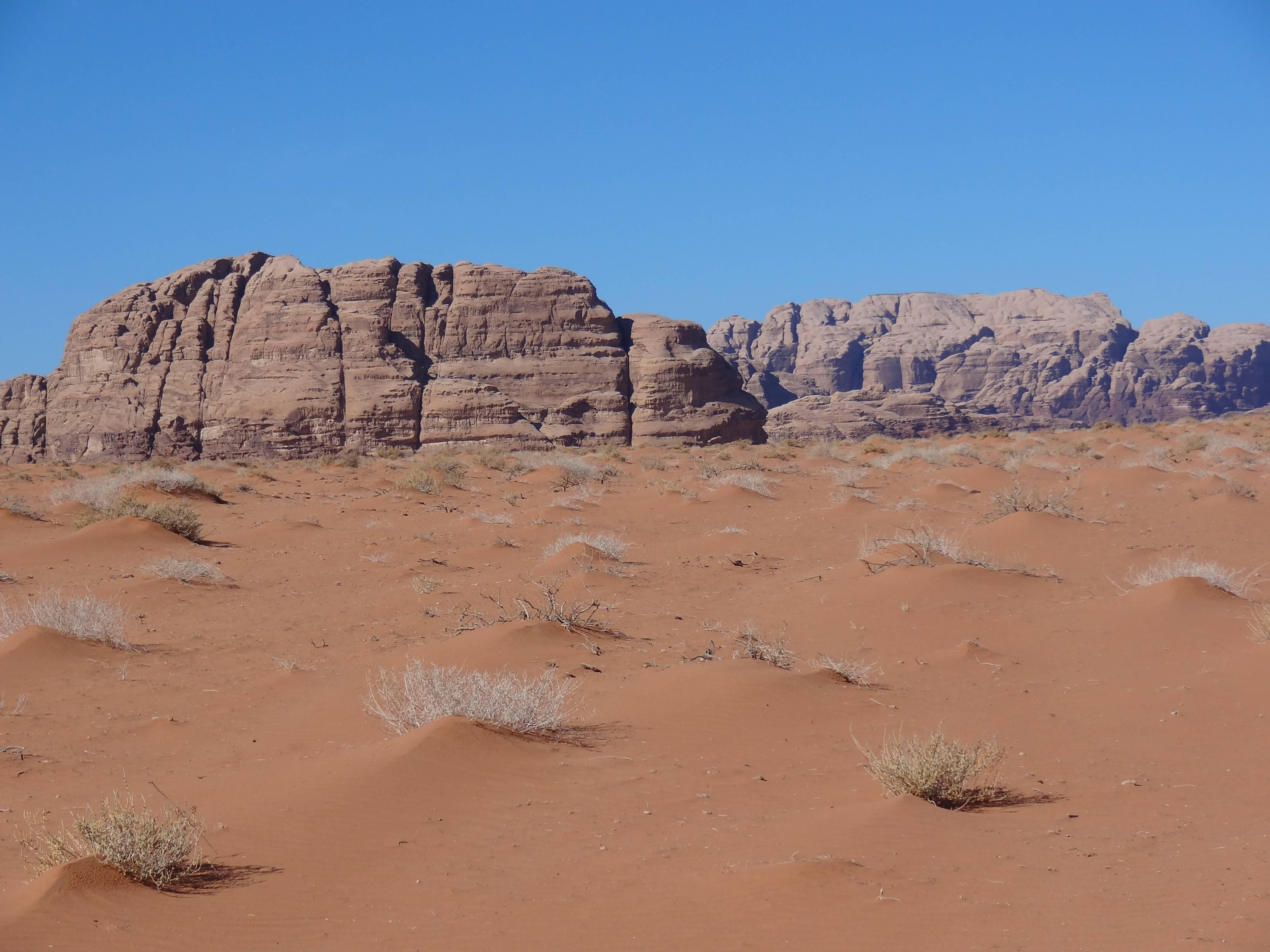 Photo 3: Immersion dans le Wadi Rum