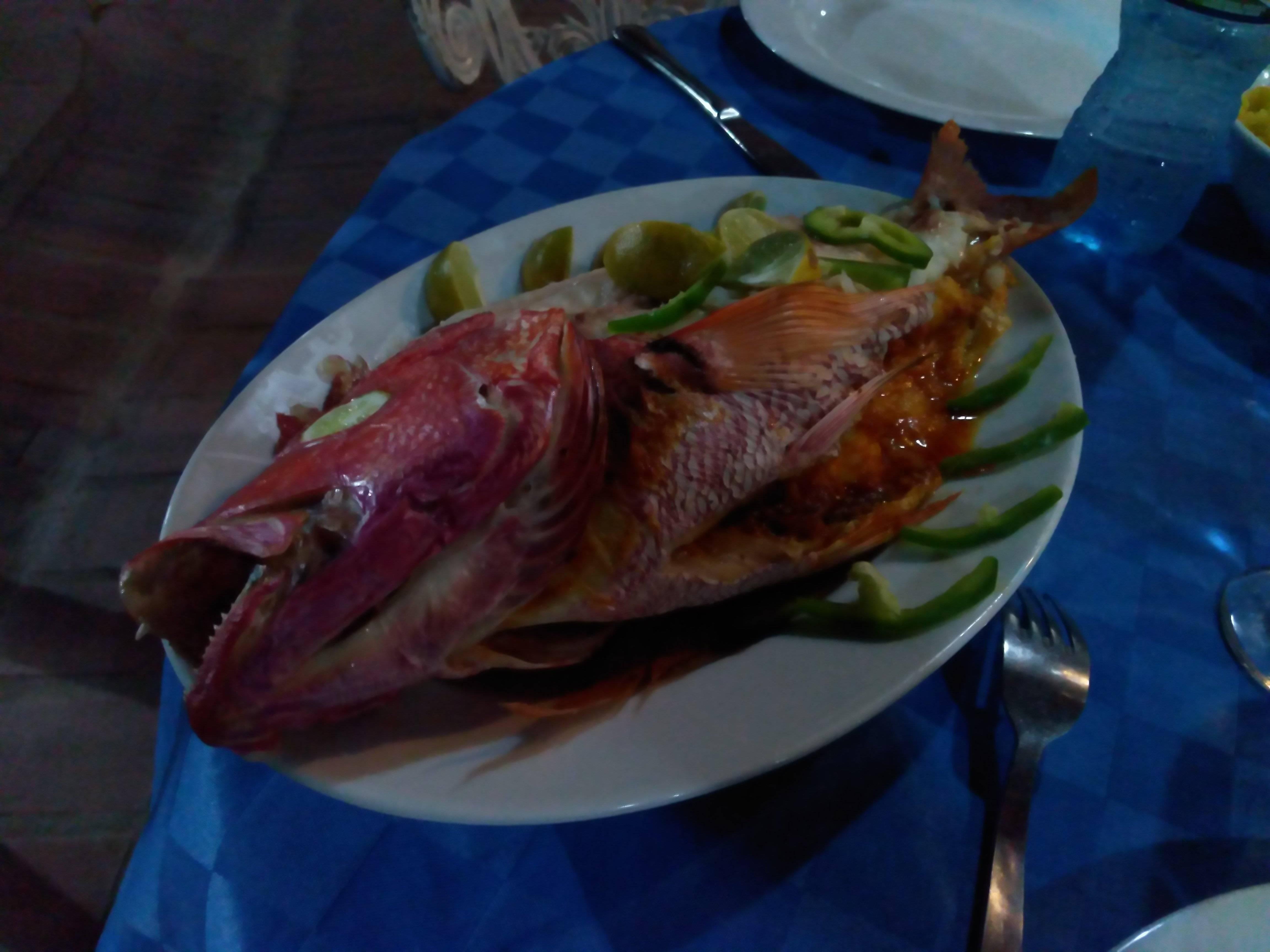 Photo 1: Manger un pargo farci aux langoustes et crevettes à Trinidad
