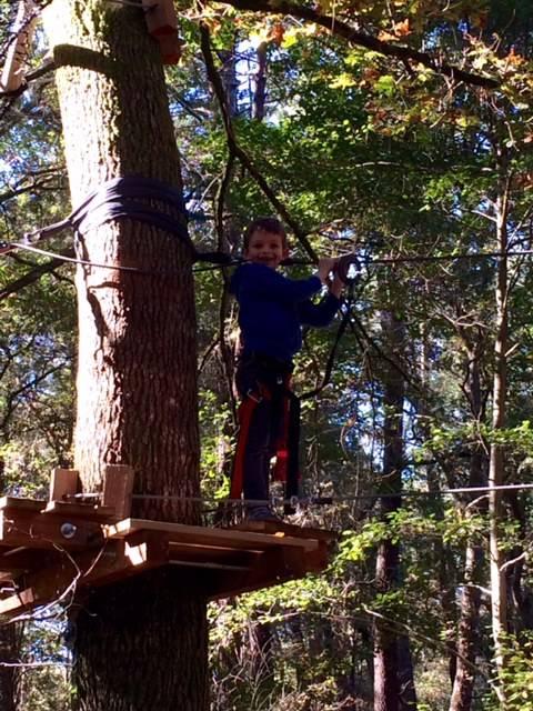 Photo 2: Après midi dans les arbres à T en Leyre