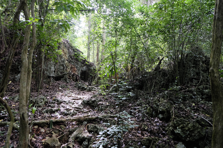 Photo 2: Balade vers une grotte préservée