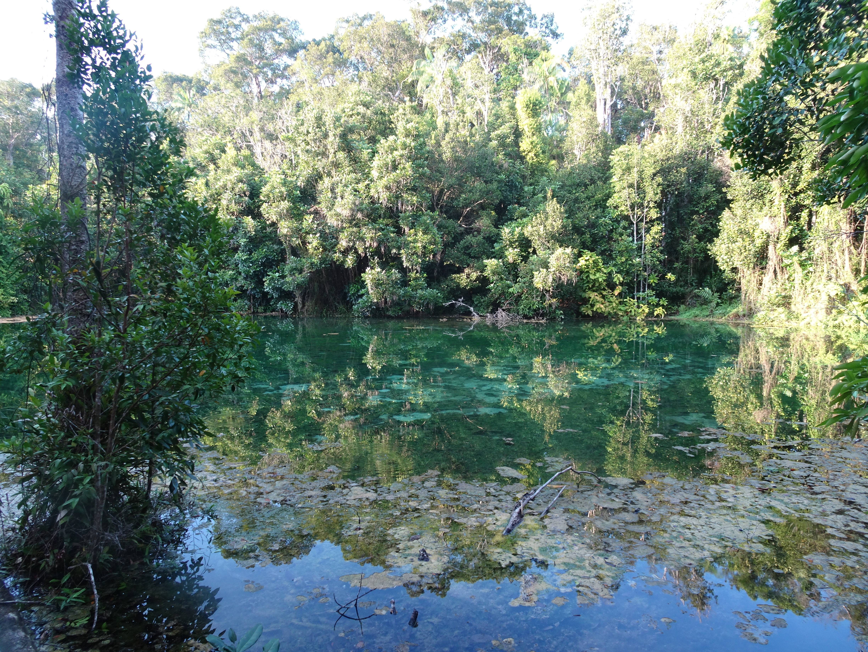 Photo 2: Emerald pool, un vrai petit joyau