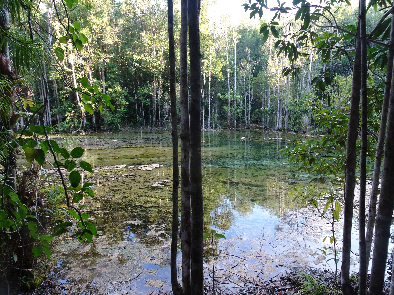 Photo 3: Emerald pool, un vrai petit joyau