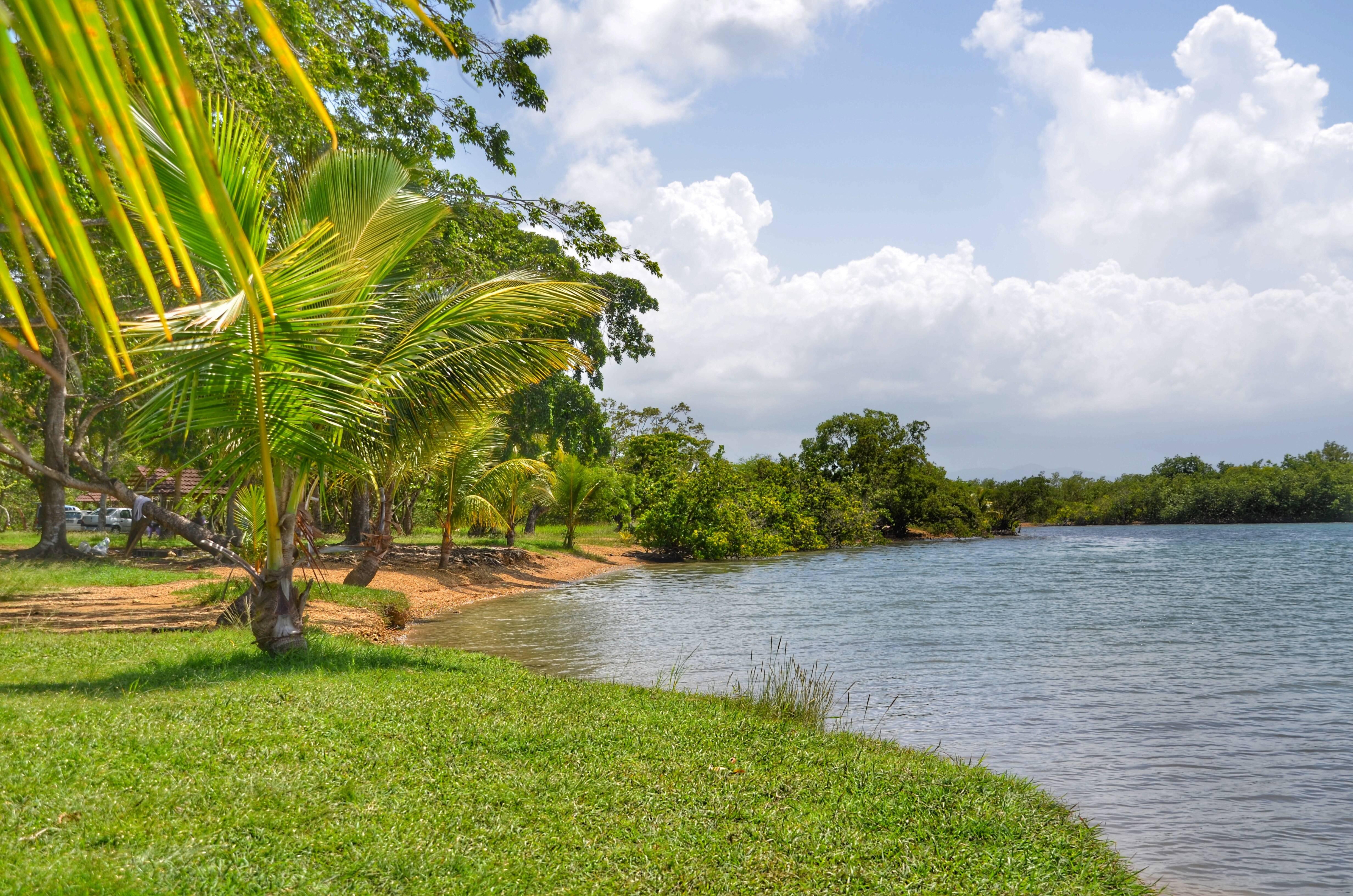Photo 1: Petit Canal, rencontre entre la mangrove et la mer des Caraïbes !