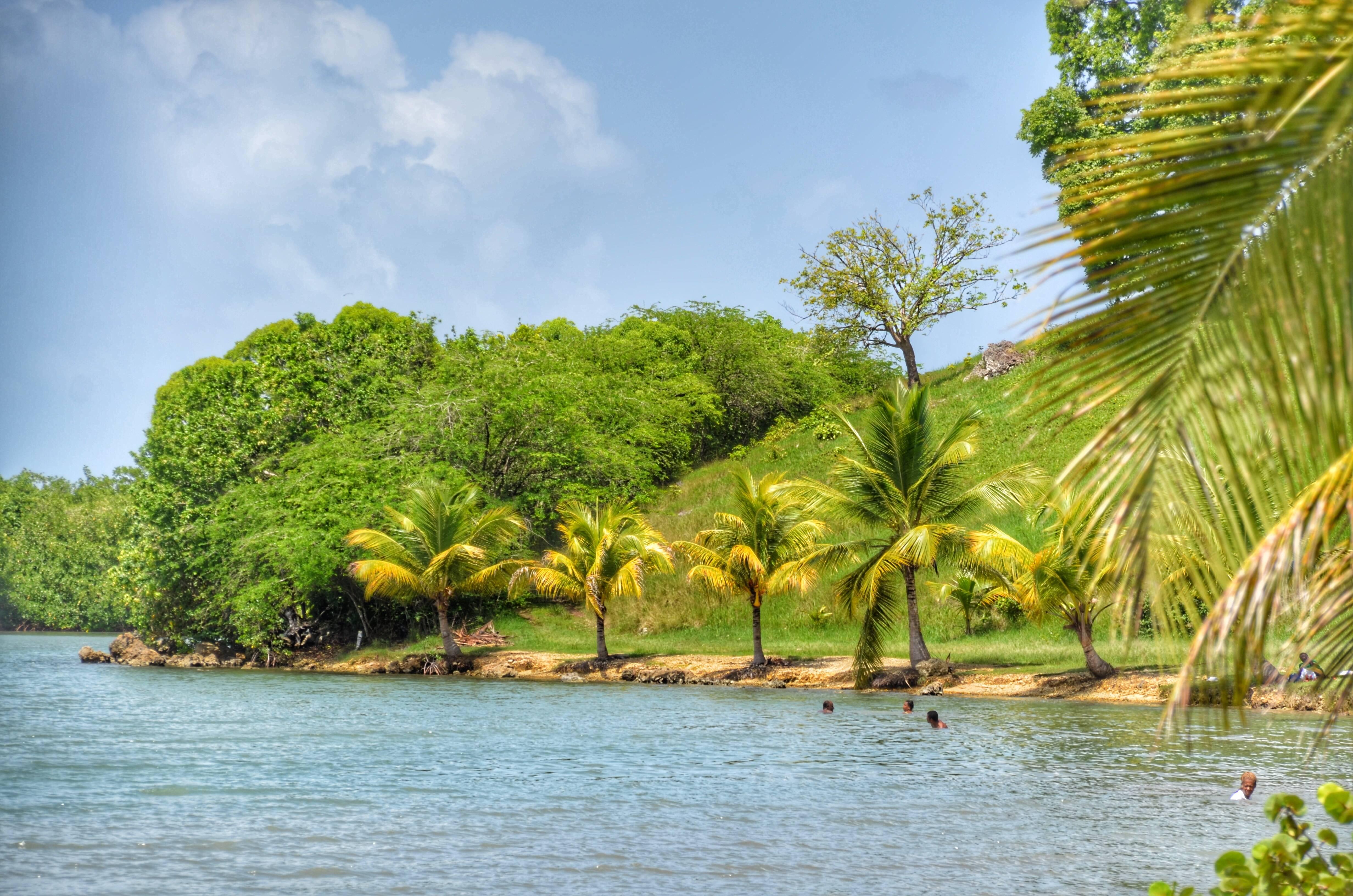 Photo 2: Petit Canal, rencontre entre la mangrove et la mer des Caraïbes !
