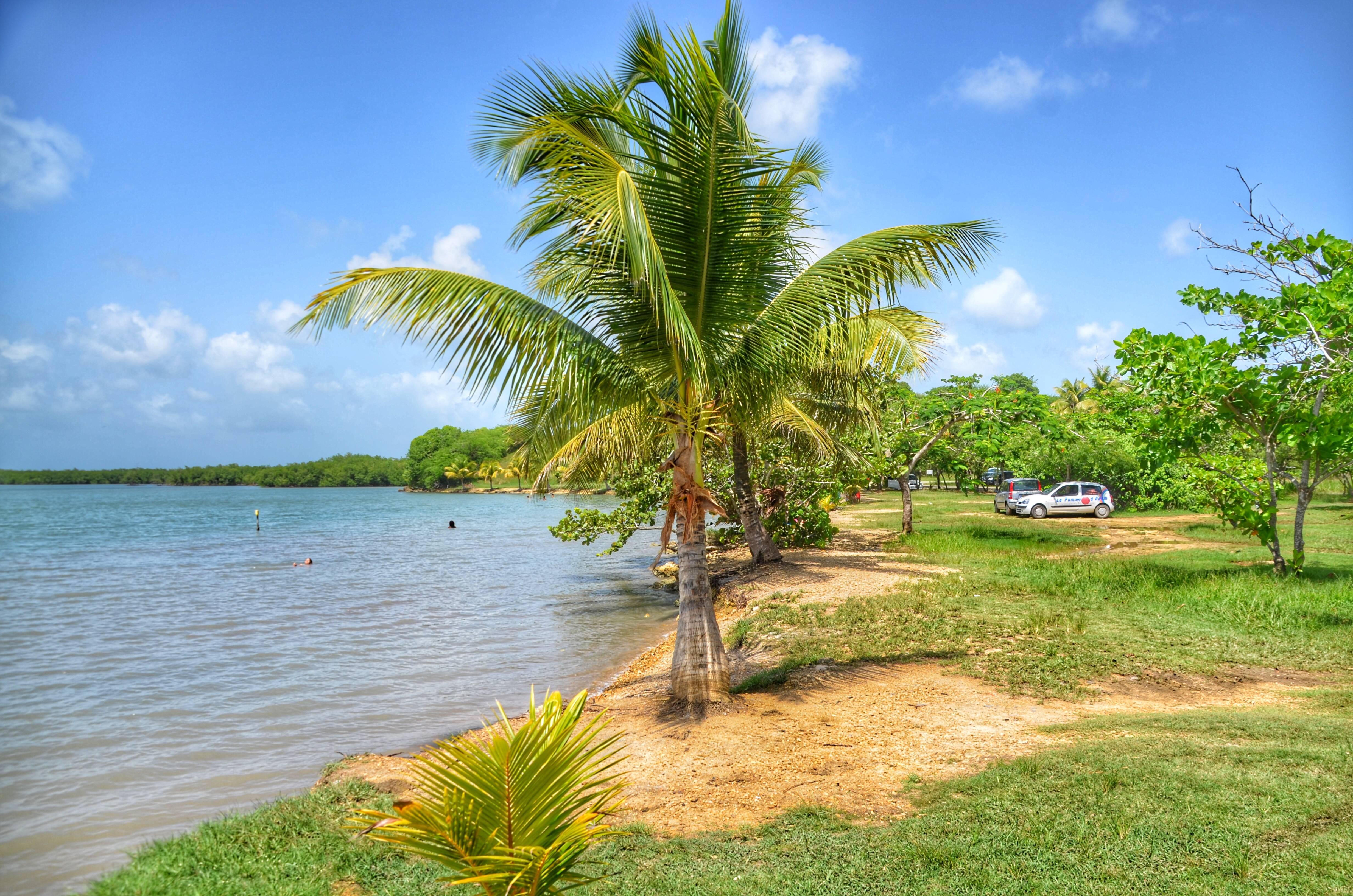 Photo 3: Petit Canal, rencontre entre la mangrove et la mer des Caraïbes !
