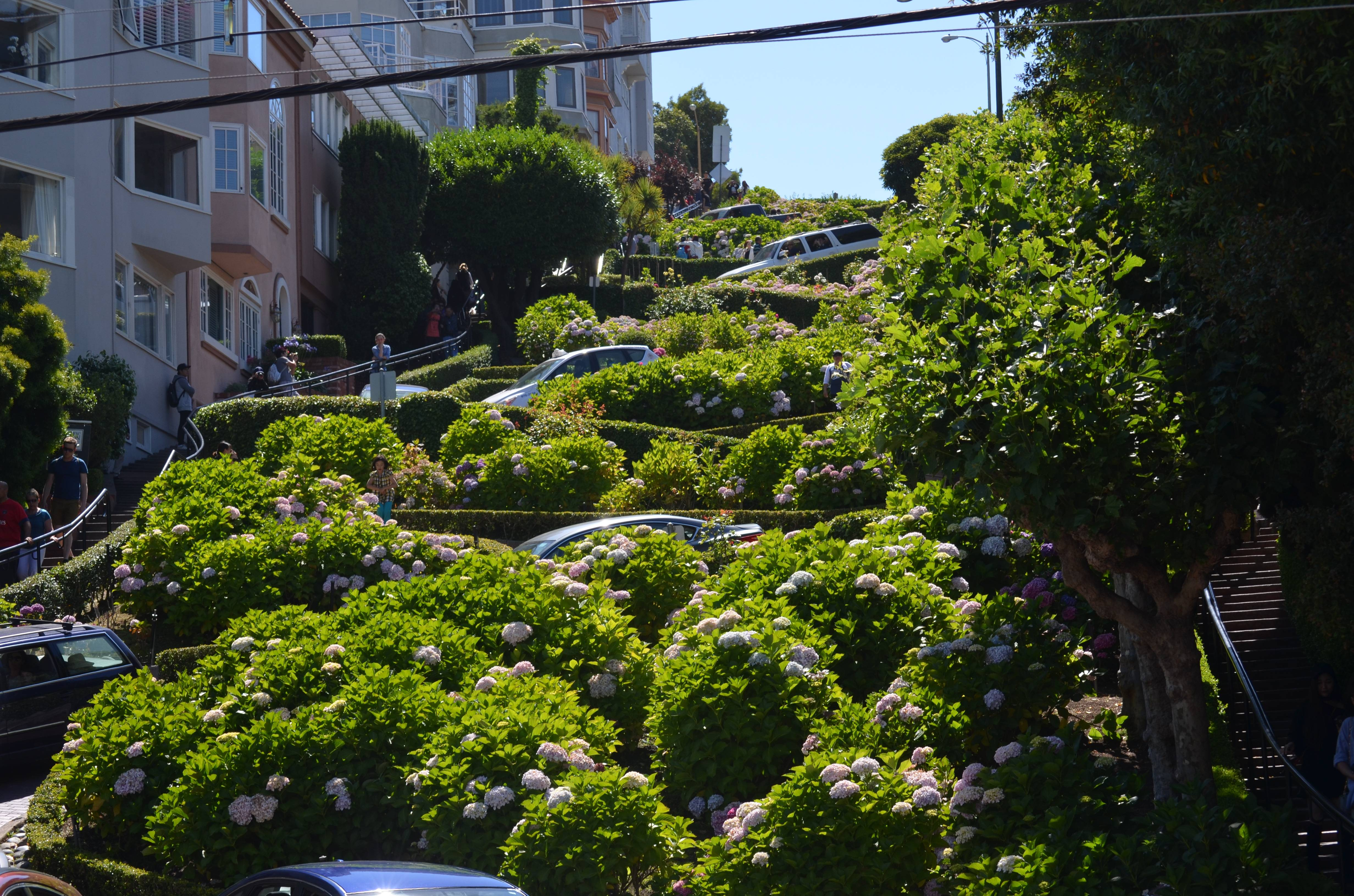 Photo 2: San Francisco, suite. Bon, c'est vrai les clichés classiques.....