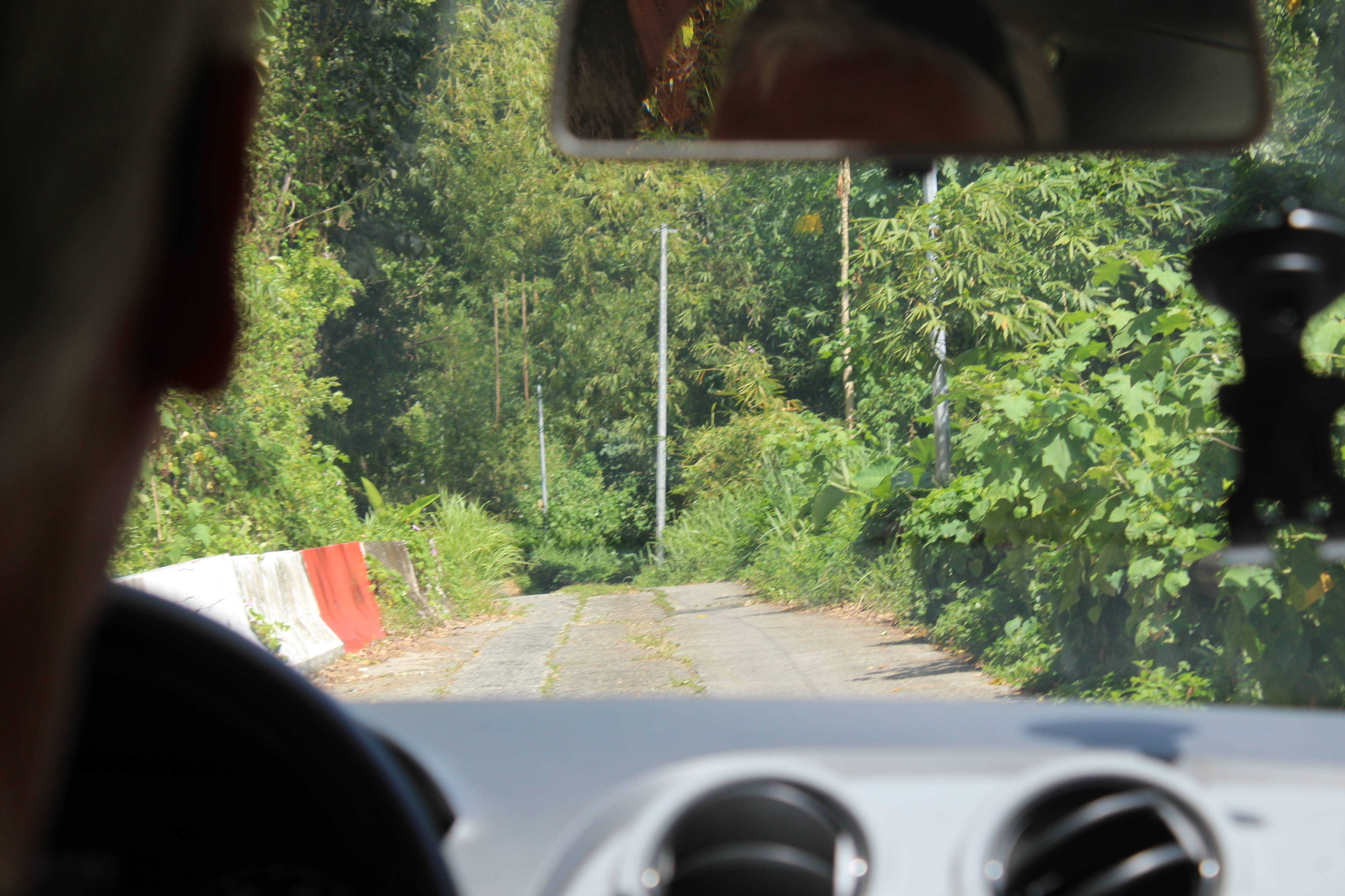 Photo 3: Martinique cascade couleuvre