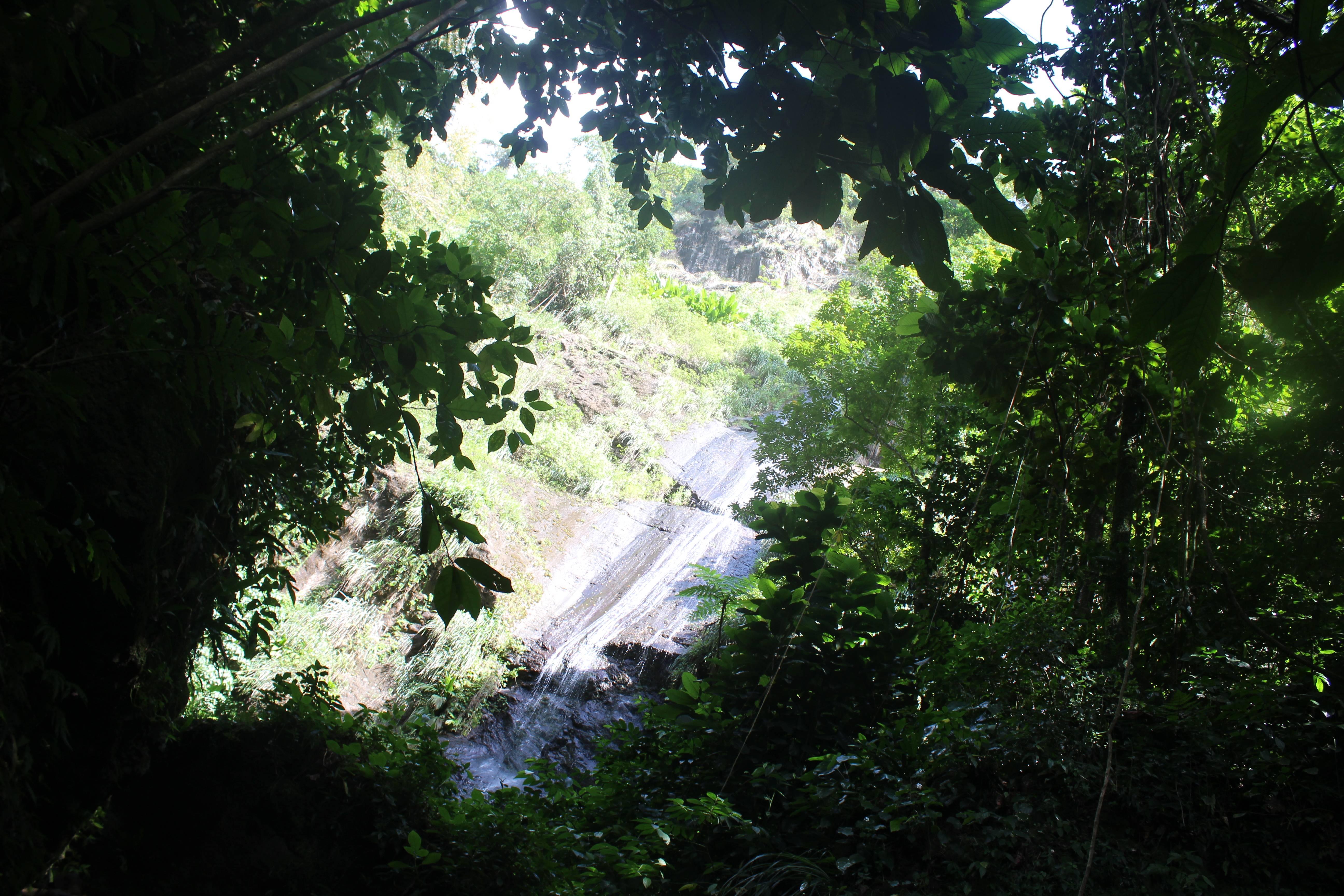 Photo 1: Martinique cascade couleuvre