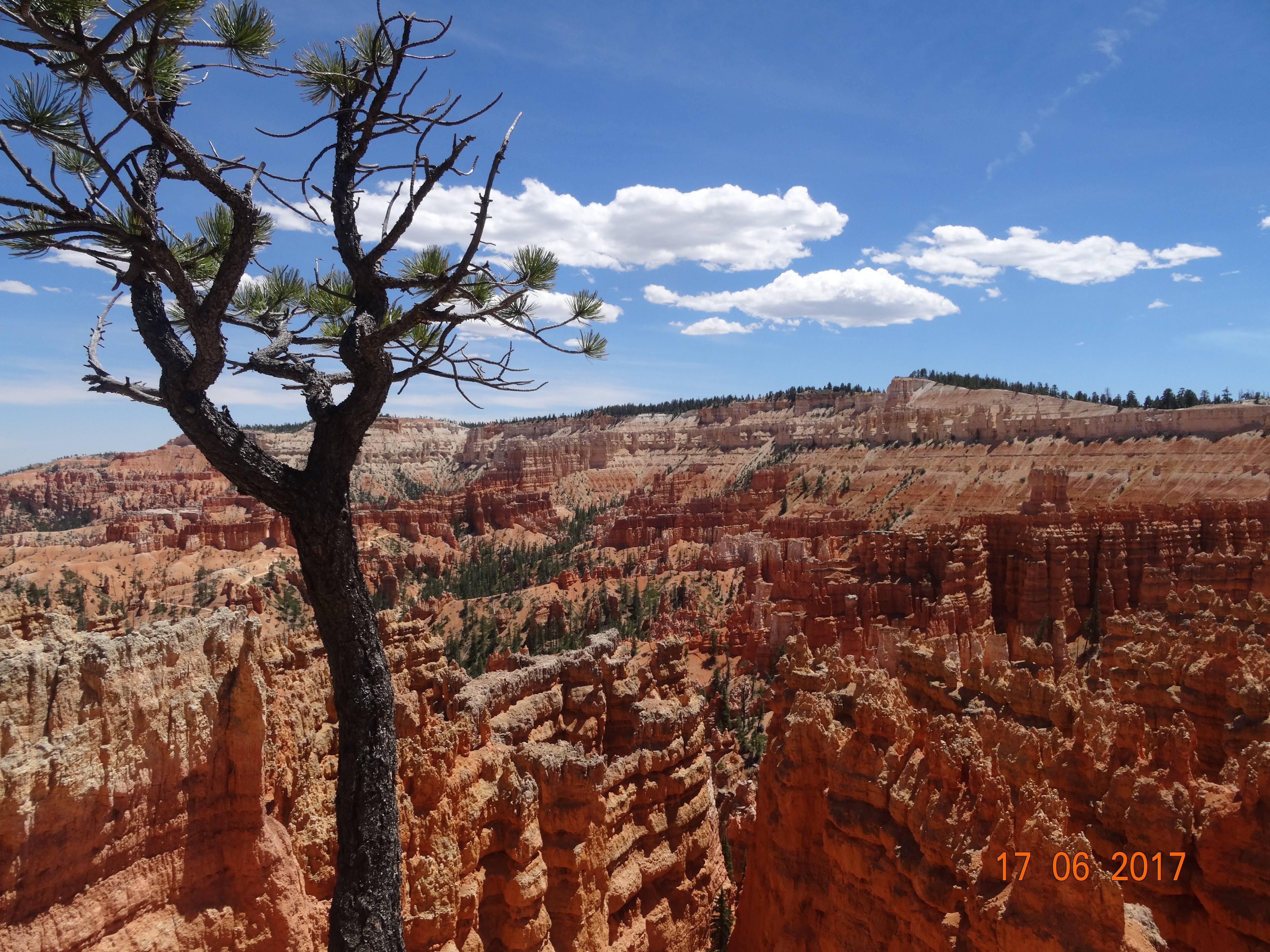 Photo 2: Bryce Canyon, encore une merveille de la nature