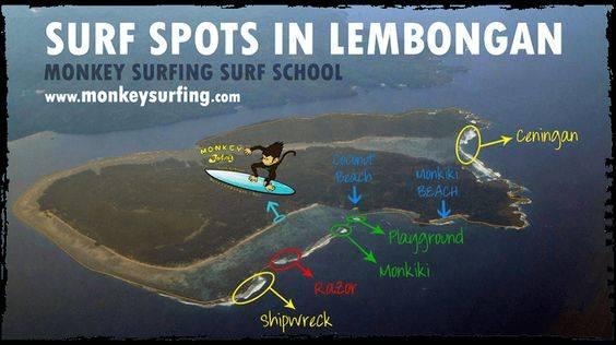 Photo 3: Monkey Surf, Surf et plongée à Nusa Lembogan