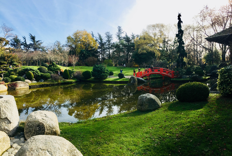 Photo 1: Détente au jardin japonais