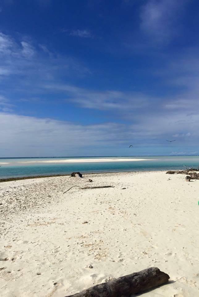 Photo 1: L'île aux oiseaux version Tetiaroa