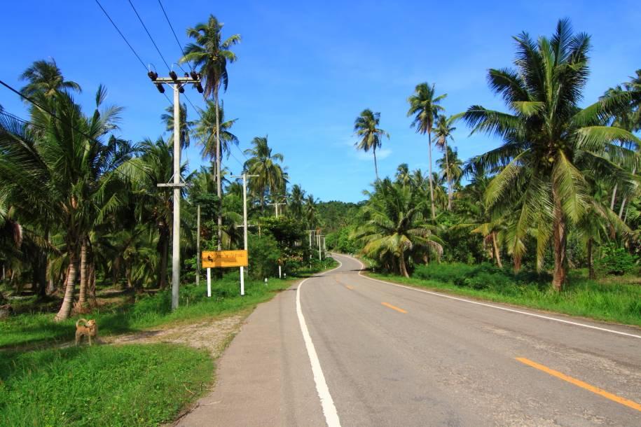Photo 3: Côte-Est Thaïlandaise à vélo - Les plages de sable blanc sans les touristes !