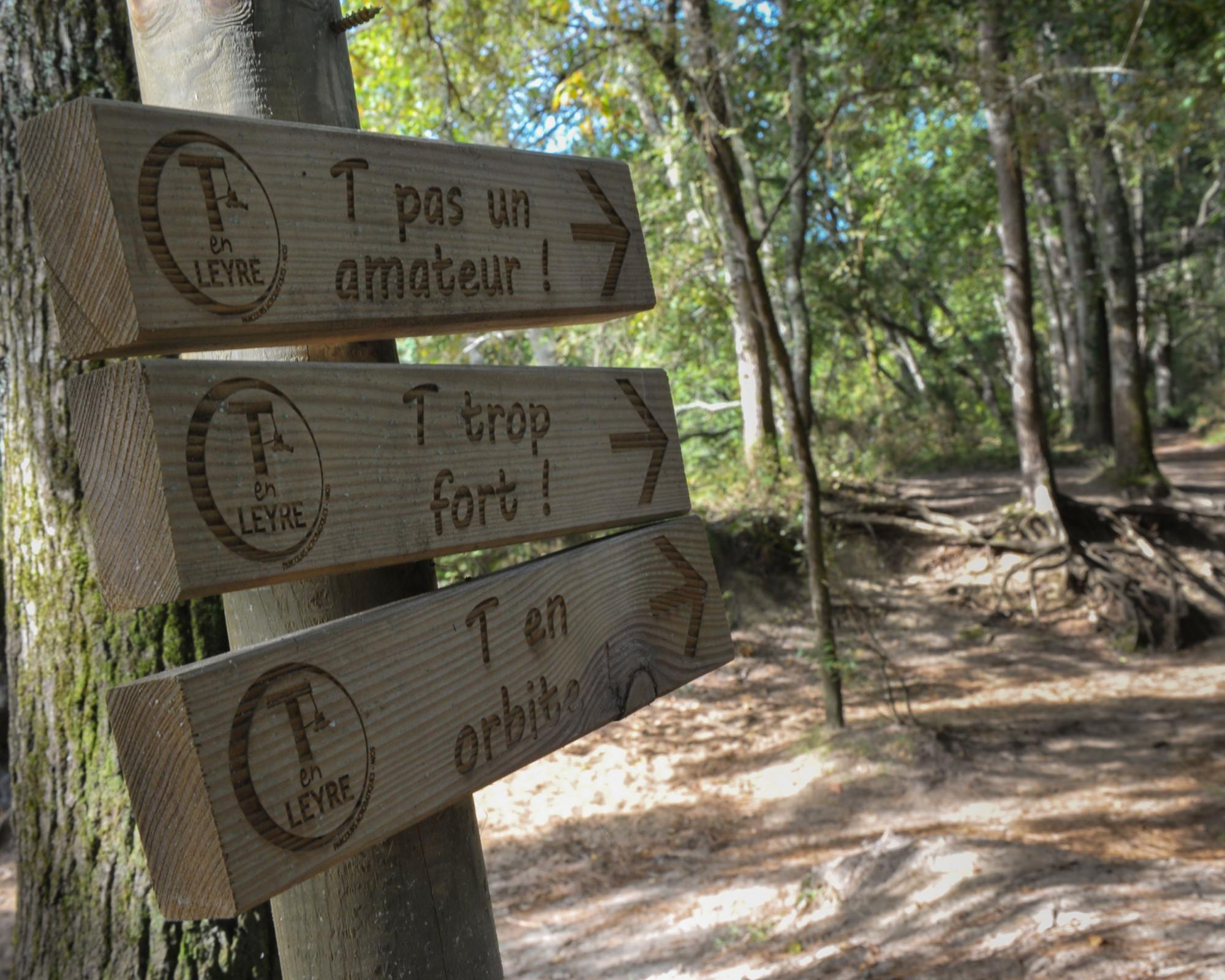 Photo 1: Un parcours accro branche pas comme les autres