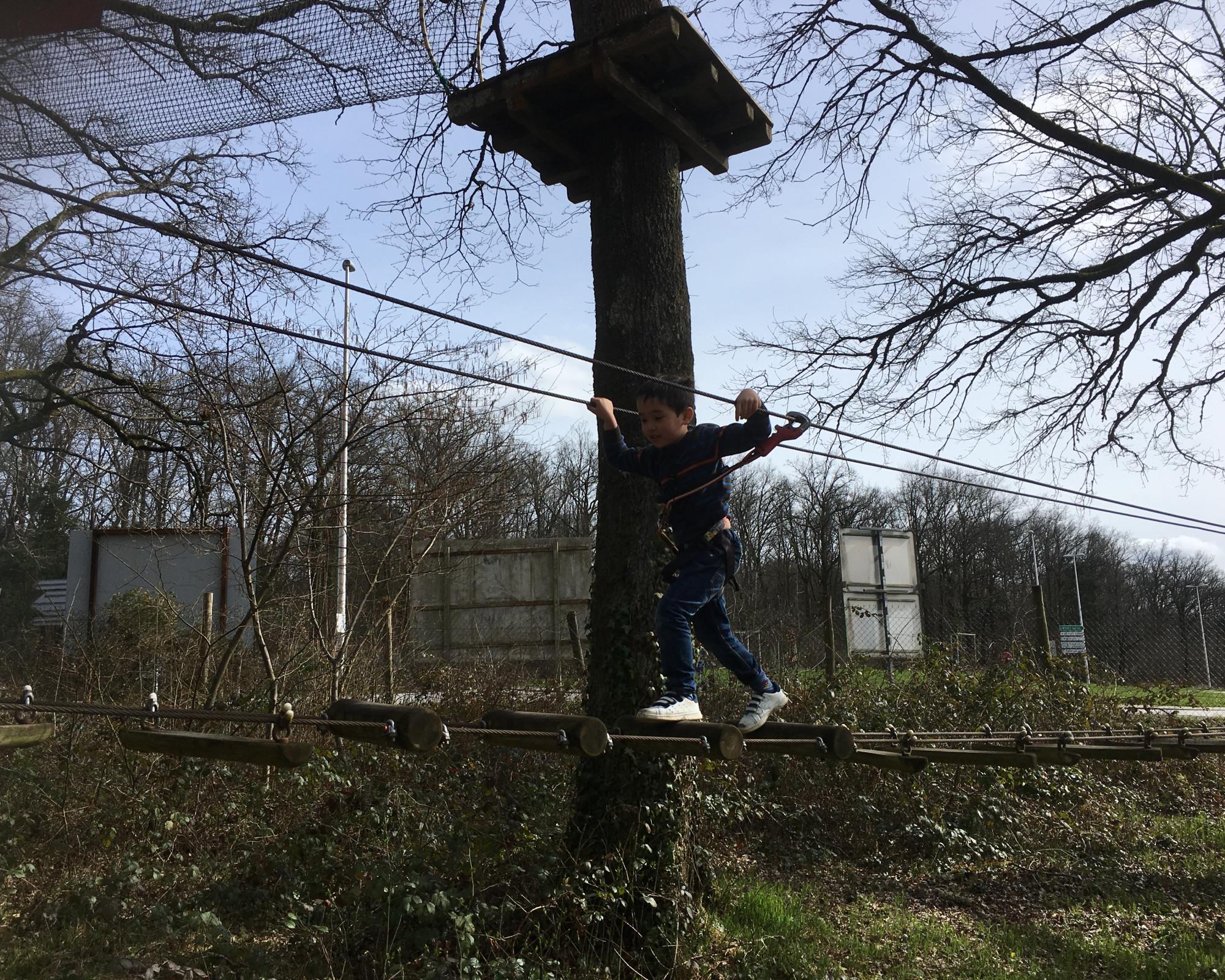 Photo 1: Faire le singe... Sans faire des kilomètres à seulement 10 minutes du centre ville de Limoges
